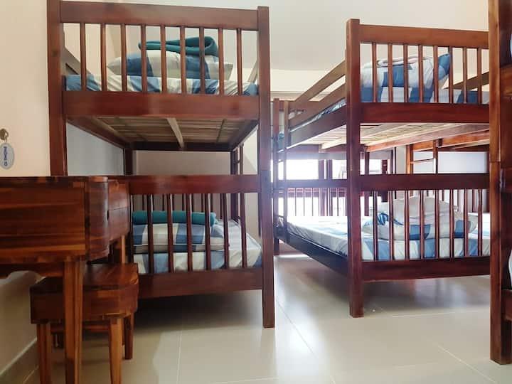Muine Ocean Houe - Female Dorm Room