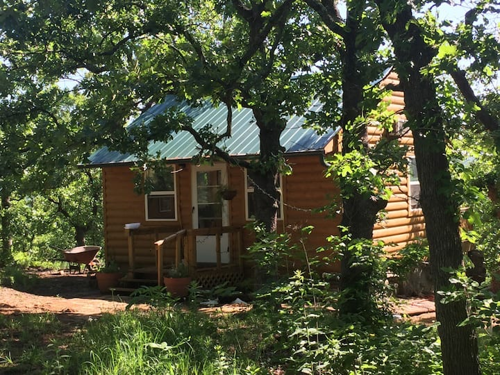 Cabin in the Osage Woods