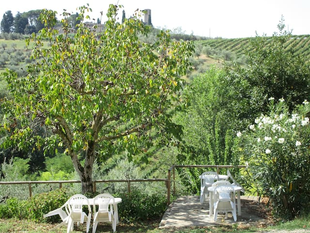 Vacanza in agriturismo S.Gimignano