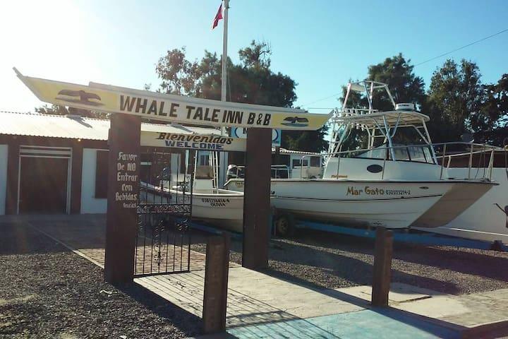Whales Tale Inn