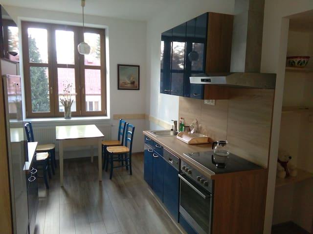 Nově zrekonstruovaný byt s lodžií blízko centra - Jindřichův Hradec - Appartement