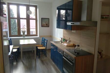 Nově zrekonstruovaný byt s lodžií blízko centra - Jindřichův Hradec - Квартира