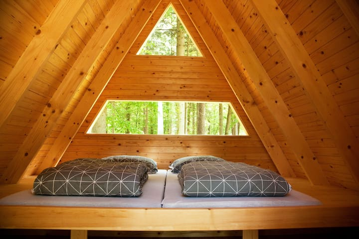 Interior of 'Forest bed' Hut with two beds