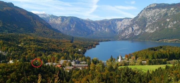 Cozy apartment 200 steps to the Lake Bohinj