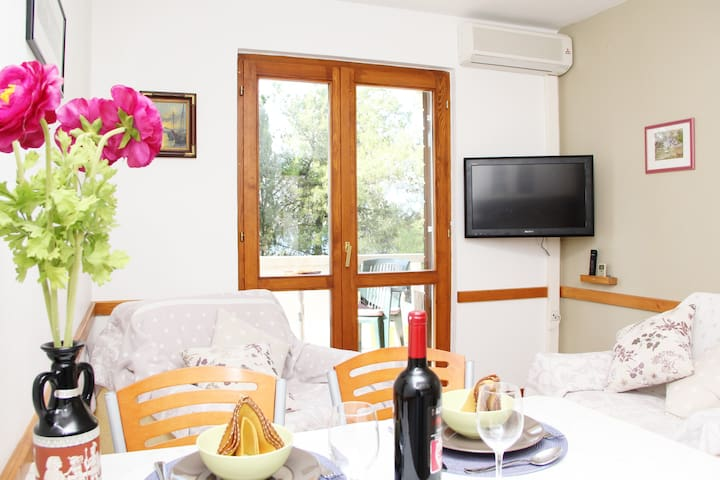 Cozy 1BD with seaview,park&wifi #1 - Arbanija - Apartment