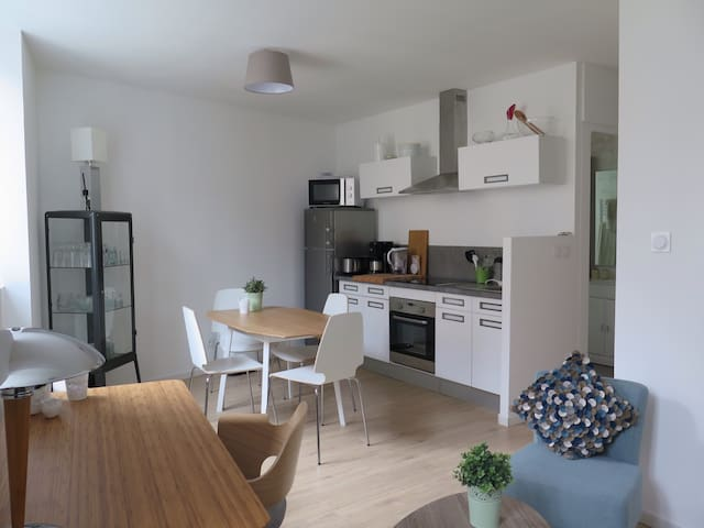 Appart. 45m2 centre ville de Dole. - Dole - Appartement