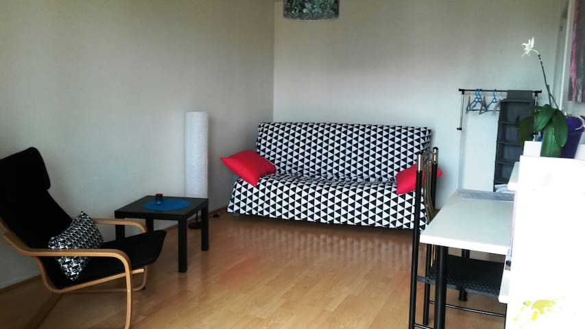 Nice little apartment with a view of the park - Mulhouse