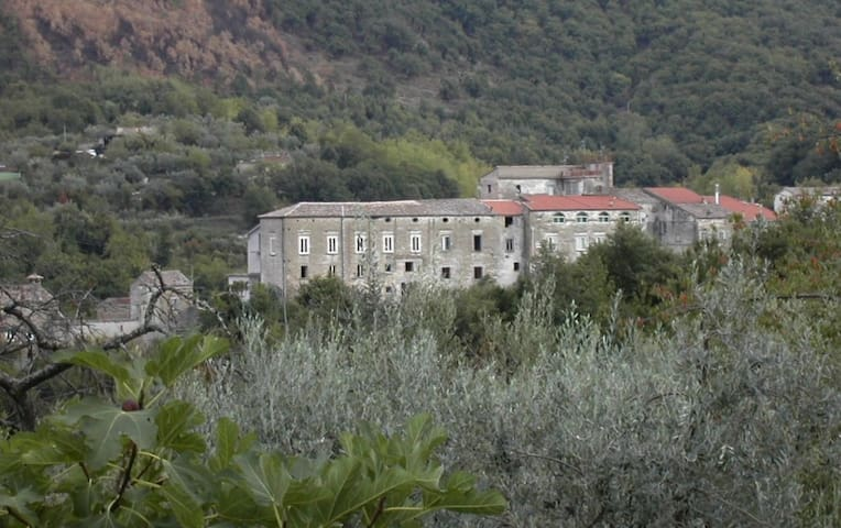 An ancient palace in chestnut trees - Conca della Campania
