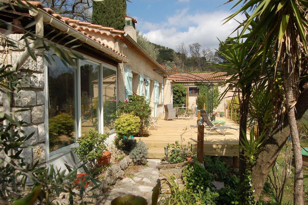 Terrasse et végétation