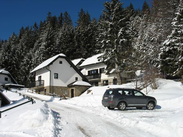 ROGLA NUNE 2+2+2 - Resnik - Apartment