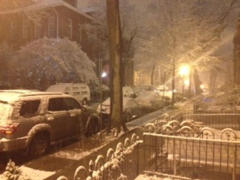 The quiet street in front of the house during the winter