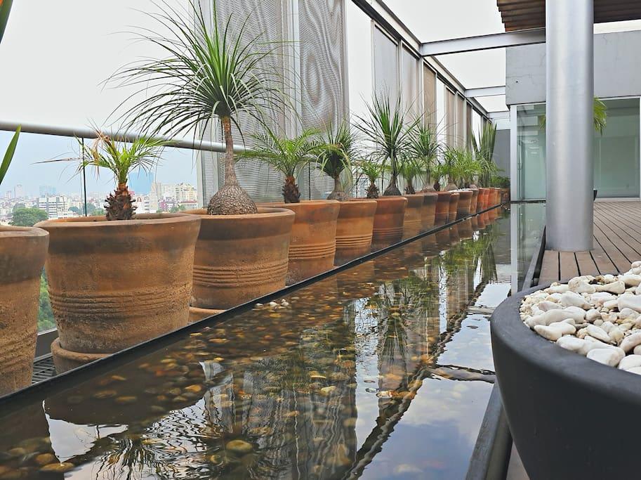Vista desde el roof garden