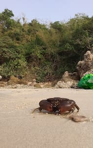 Вилла с бассейном - Na Chom Thian