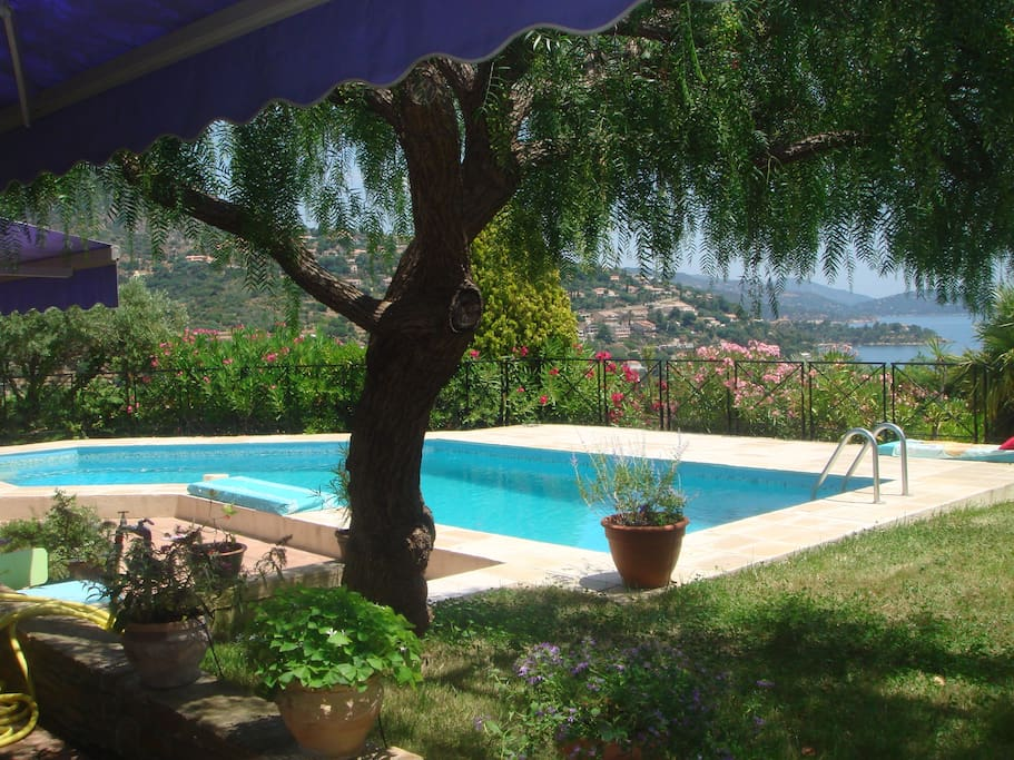 Superbe Villa Avec Piscine Vue Mer Villas Louer Le