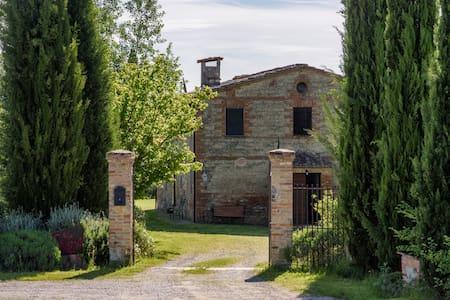 Podere Corniuzza  - Girasole - Castelnuovo Berardenga
