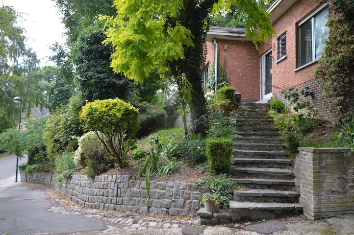 Big vintage renovated villa in green environment