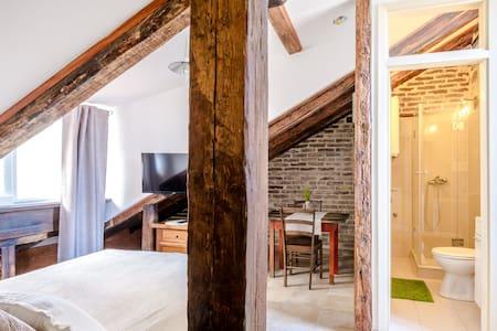 Studio attic - Apartament