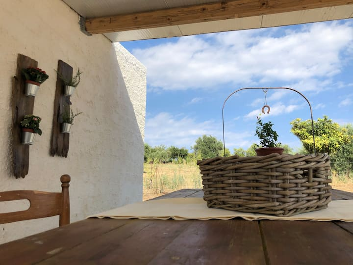 Tenuta Basile Noto / Slow live & Home made Food
