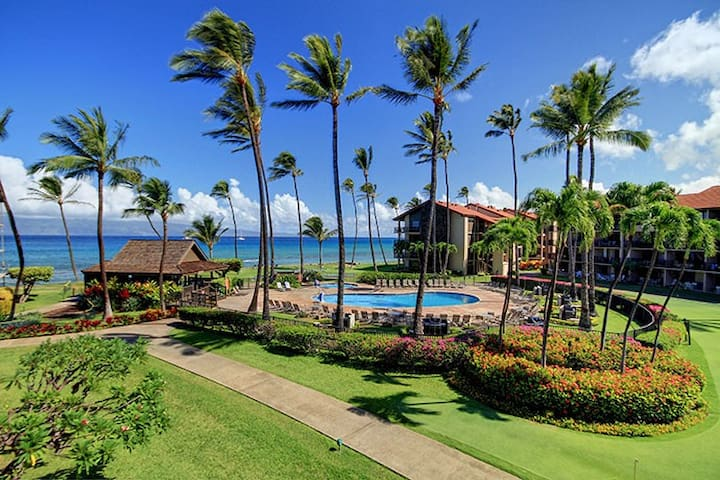 Maui Papakea Oceanview Private 1 BR - Lahaina