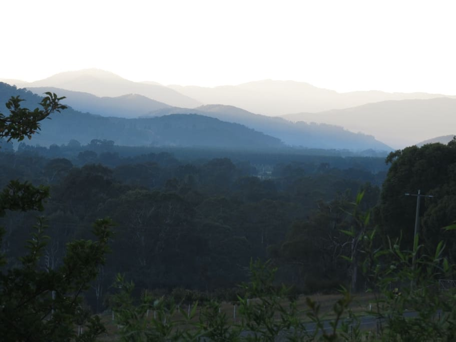 View from the house towards Mt Bogong