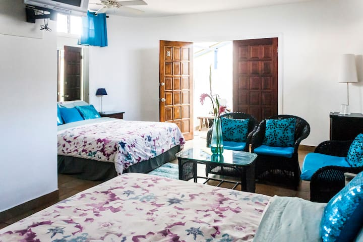 ⭐ San Jose Costa Rica - BIG King and Queen Room ⭐