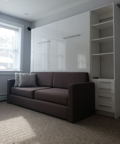 Living Room & King Pull Down Murphy Bed