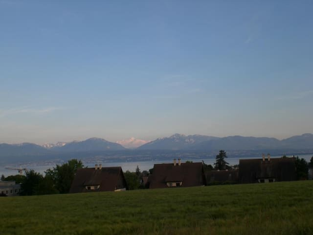 Face to the lake and the mountains - Morges