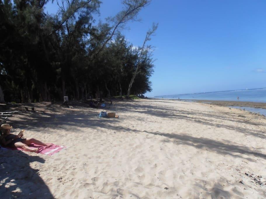 Belle plage ombragée sur le lagon