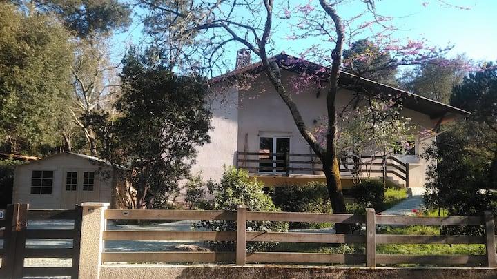 Grande maison Maubuisson proche lac centre, calme