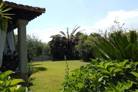 Vicino LaCinta ampio giardino - san teodoro - Apartamento