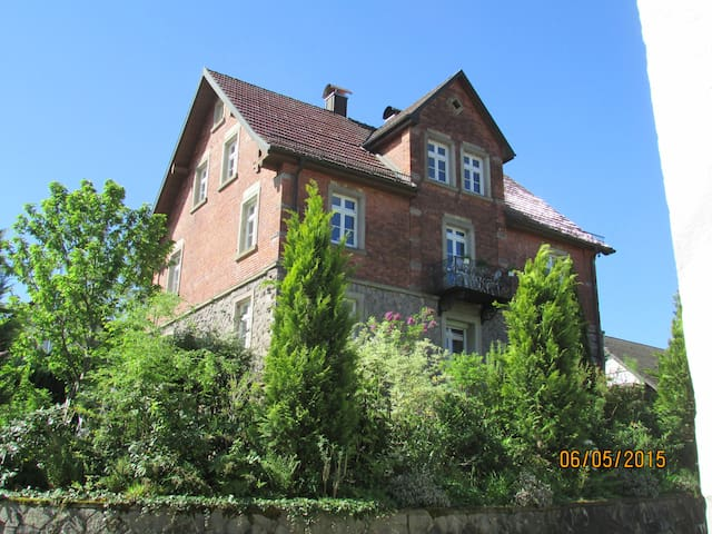 Holiday apartment in the vineyards - Durbach - Apartamento