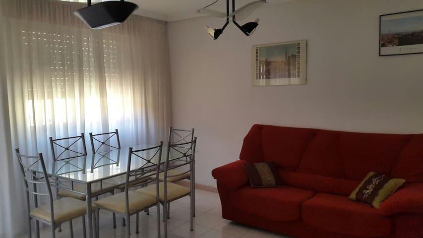 Alquiler piso Murcia Verano - Murcia - Apartment