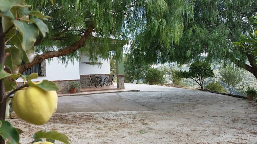 Casa rural Sierra de Cádiz. - Ubrique - Haus