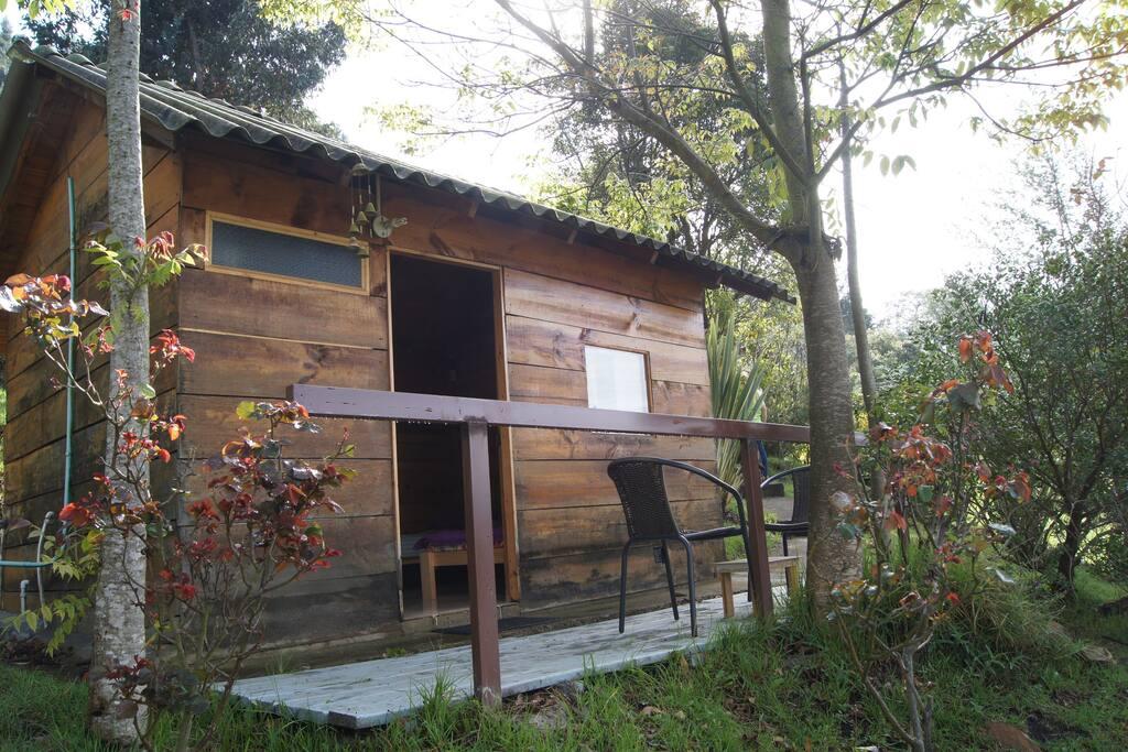 Pino cabin