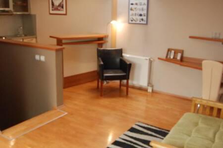 Car Royal Apartman-Deluxe apartment - Novi Sad