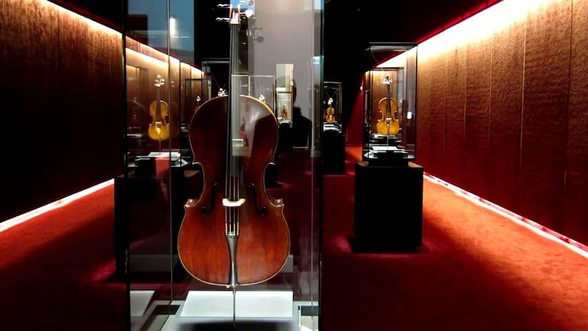 Violino sul Tetto - Cremona - อพาร์ทเมนท์