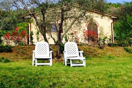 Gorgeous cottage near Cortona - La Dogana - Villa