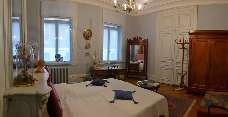 La Maison de Papillon - Lille - Bed & Breakfast