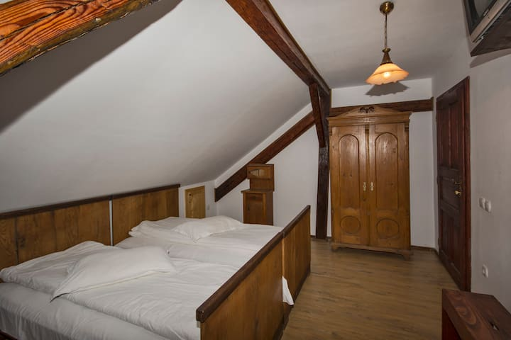 Guest house in Transylvania - Saschiz - Bed & Breakfast