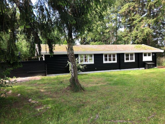 Nyistandsat Norsk Bjælkehus På 1500m2 Naturgrund