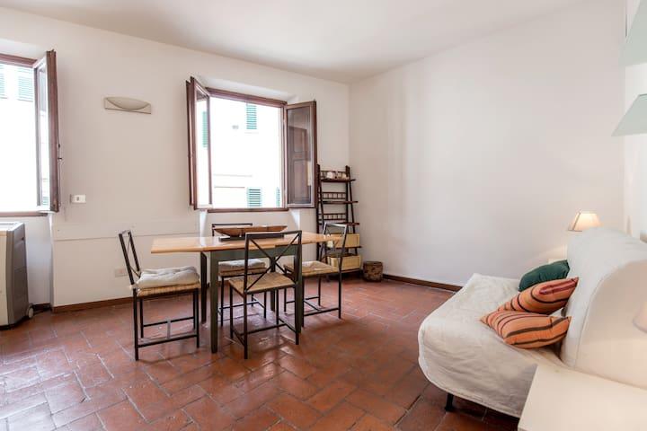 Cozy Studio in Central Location - Florence - Leilighet