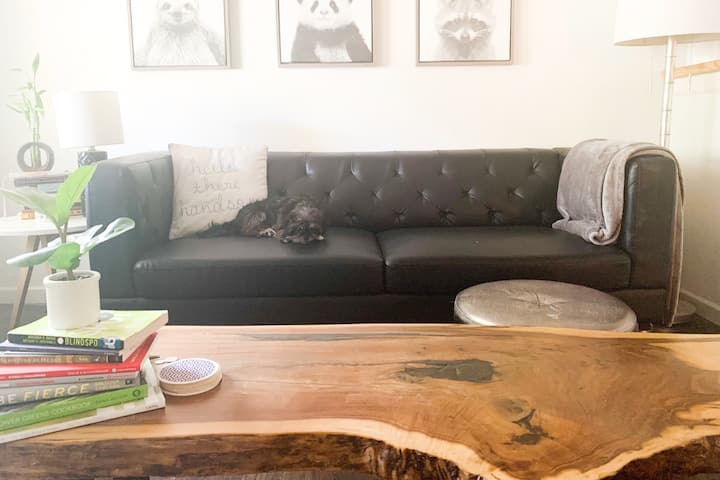 Light & Airy Studio 15mins to Downtown dogfriendly
