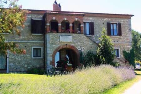 Podere Sant'Alessandro - San Gimignanello
