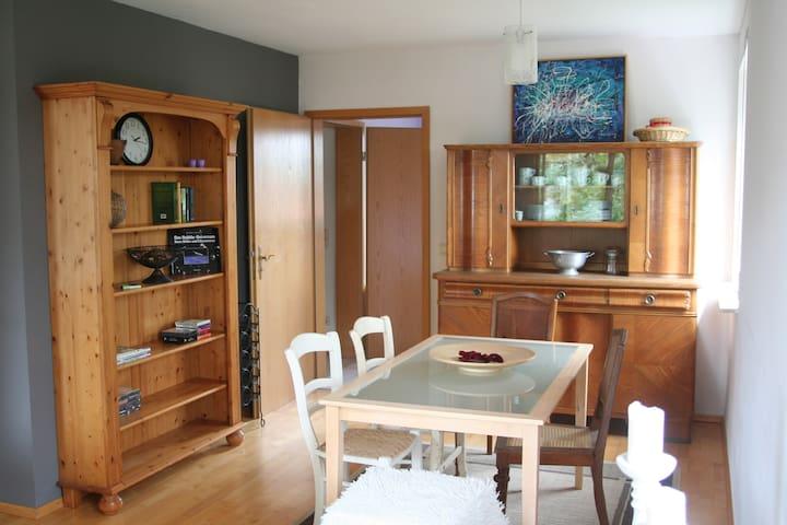 Helle Maisonettwohnung mit schönem Ausblick - Bubenheim - Apartment
