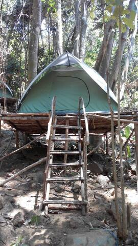 RainForest Camping Pulau Perhentian - Pulau Perhentian Kecil - Tent
