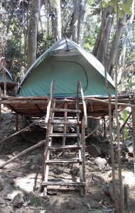 RainForest Camping Pulau Perhentian - Pulau Perhentian Kecil