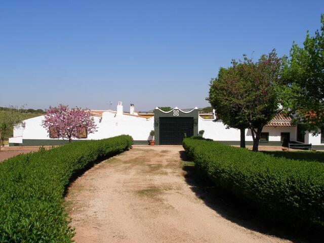 Finca La Marina, casa de campo en Ruta del Quijote - La Solana - Huis