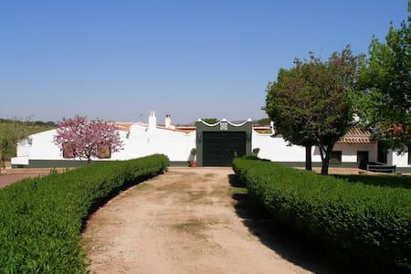 Finca La Marina, casa de campo en Ruta del Quijote - La Solana - Hus