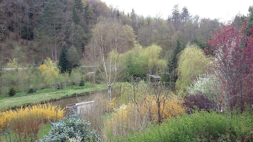Chambre chez l habitant - Taintrux - Villa