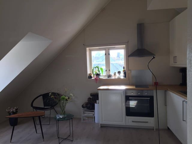 Beautiful studio in the heart of Trondheim - Trondheim - Daire